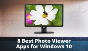 The Best Photo Viewer for Windows 10: 8 Apps Compared